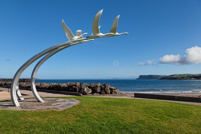 Cztery łabędź dziecka Lir rzeźbią w Ballycastle, Północny Ir obraz stock