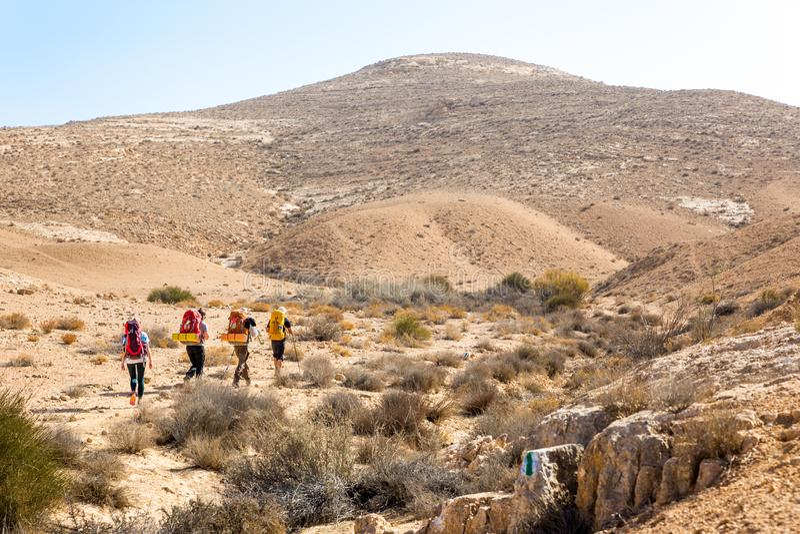 Cztery backpackers wycieczkuje ślad, pustynia negew, Izrael obraz stock
