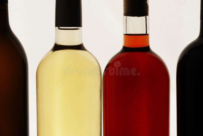 Cztery butelki wino, biały tło, czerwone wino, biały wino, różany wino obraz royalty free