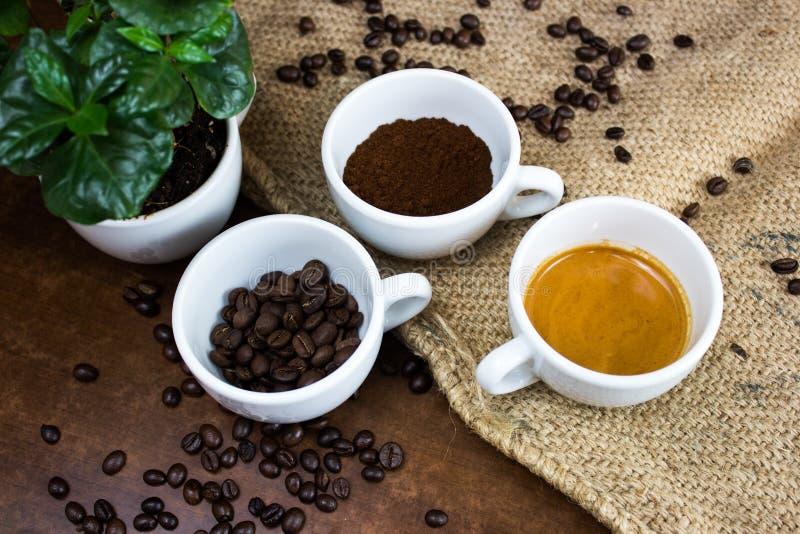 Cztery fazy kawowy życie zdjęcia royalty free
