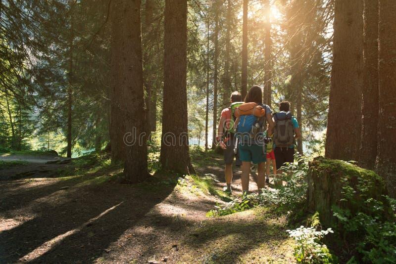 Cztery mężczyzna i kobiety odprowadzenie wzdłuż wycieczkować ślad ścieżkę w lasowych drewnach podczas słonecznego dnia Grupa przy obrazy royalty free