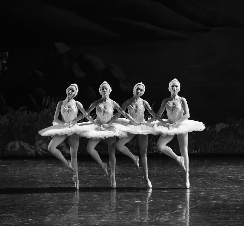 Cztery mały klasyk czarny i baleta Łabędź jezioro zdjęcie stock