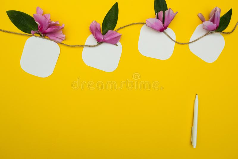 Cztery notatki na sznurku z kwiatami na tle, piórze i miejscu dla teksta żółtych, zdjęcia royalty free