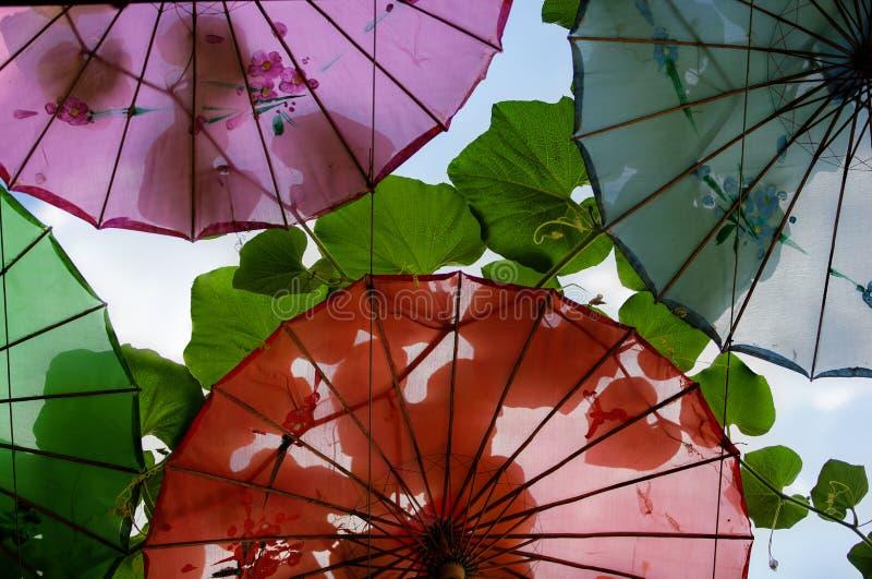 Cztery parasola na słonecznym dniu z ampułą zapominają parasole ciskać cienie obraz royalty free
