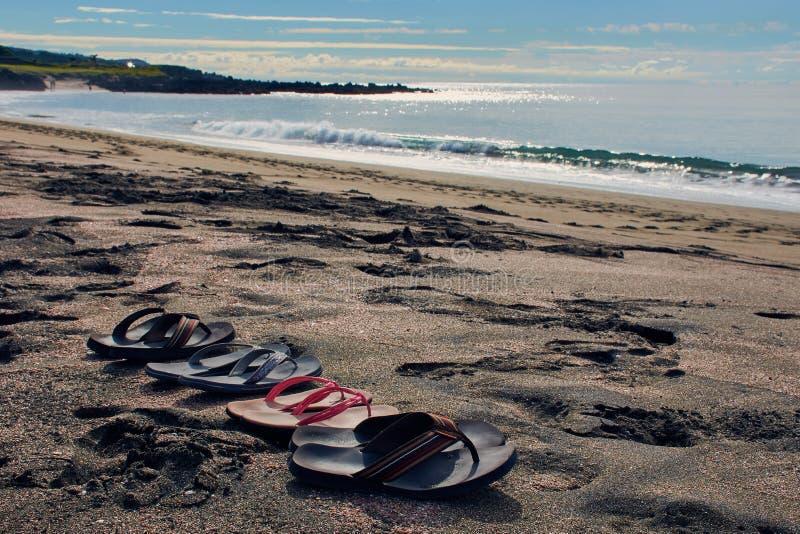 Cztery pary trzepnięcie klapy przy plażą obraz royalty free