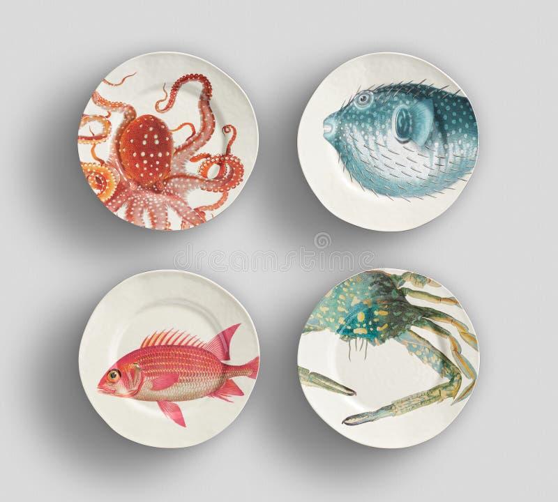 Cztery rocznika Rybiego Kwiecistego Paragon Porcelanowy Obiadowy talerz z białym tłem zdjęcie royalty free