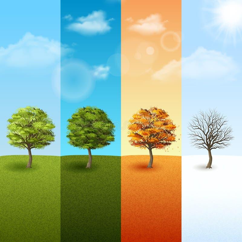Cztery sezonów sztandaru drzewny set ilustracji