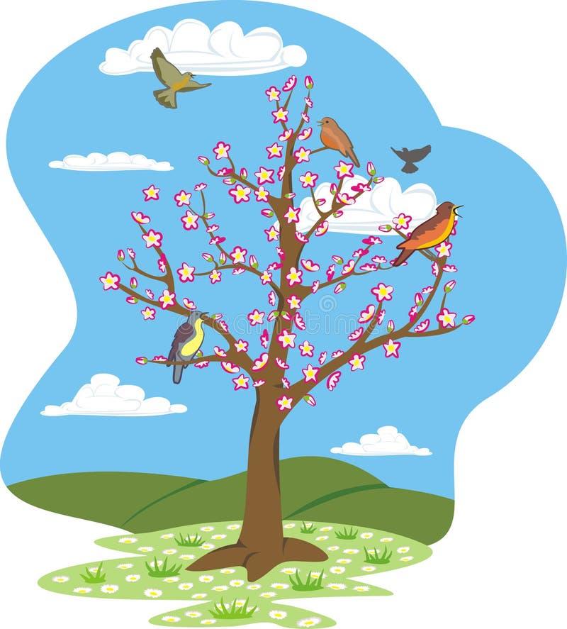 cztery sezonów wiosna drzewo royalty ilustracja