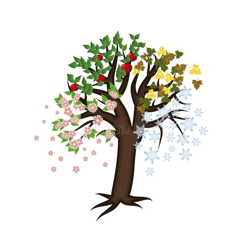 Cztery sezonu drzewo, wektor royalty ilustracja