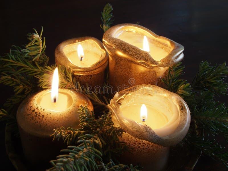 Cztery złotej sosny gałąź tworzy Bożenarodzeniową dekorację i świeczki obrazy royalty free