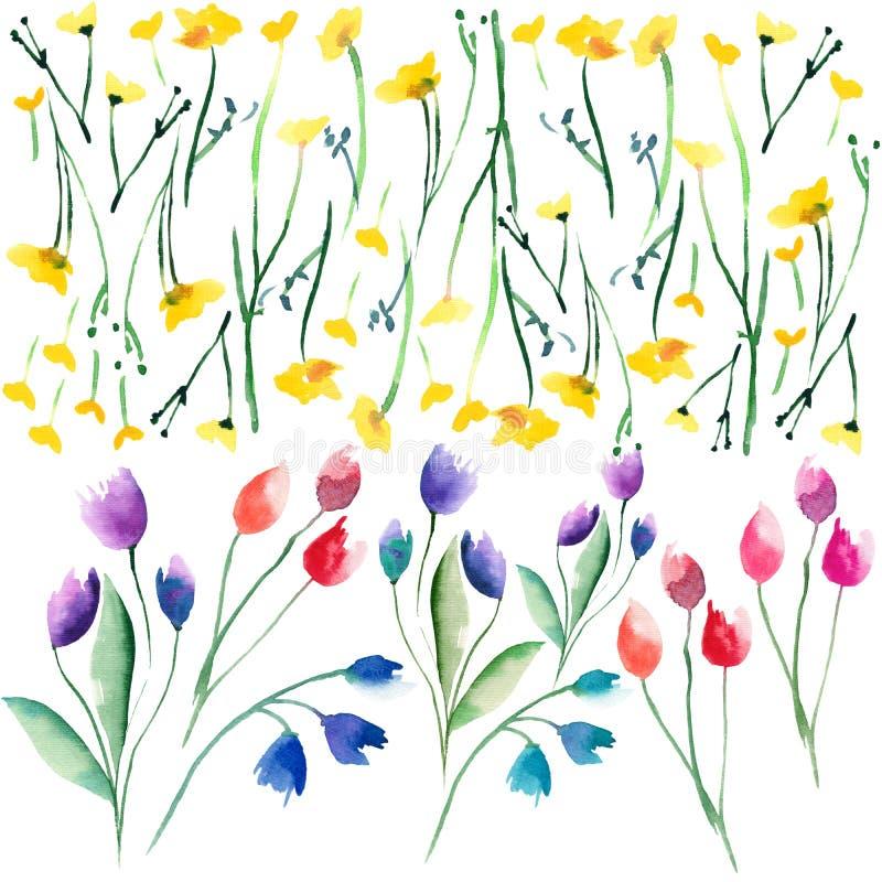 Czułej delikatnej pięknej jaskrawej wyszukanej wiosny kolorowi tekstylni żółci wildflowers, czerwień różowi fiołkowi tulipany i b ilustracji