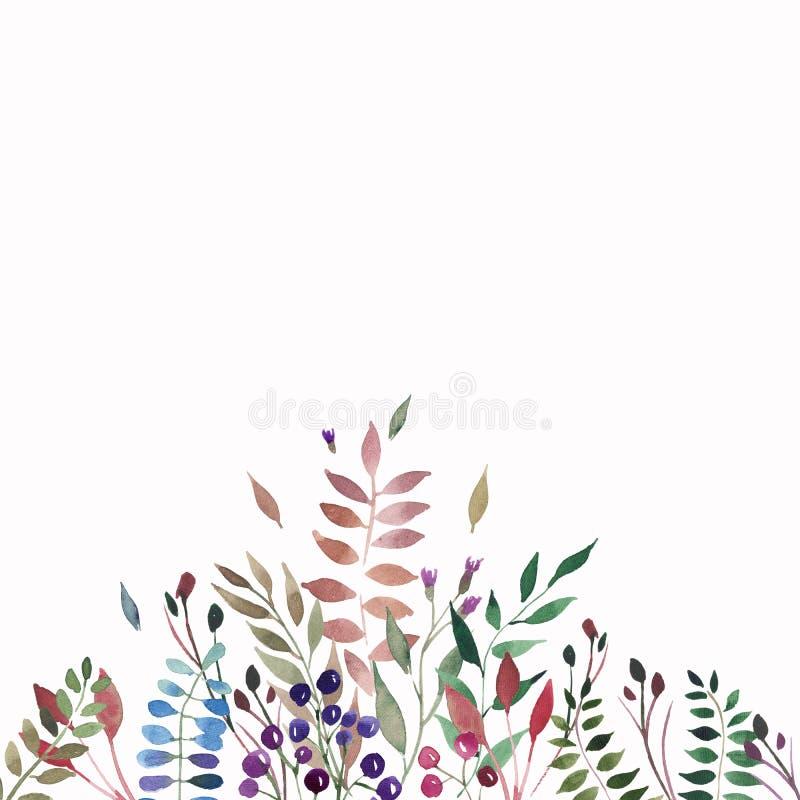 Czułej pięknej delikatnej jesieni cudowna kolorowa ziołowa kwiecista czerwona żółta pomarańczowa trawa, liście i jagoda skład, ilustracja wektor