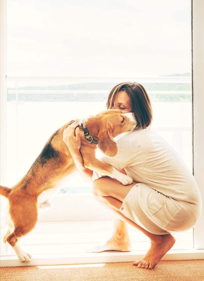 Czu?a scena na pogodnym tarasie: beagle pies ca?uje sw?j w?a?ciciela Zwierzęcia domowego pojęcia wizerunek w domu zdjęcia royalty free