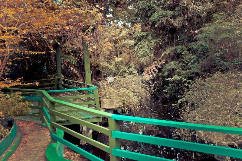 Czuje Samotnie w lesie z balkonem i rzeką zdjęcia stock
