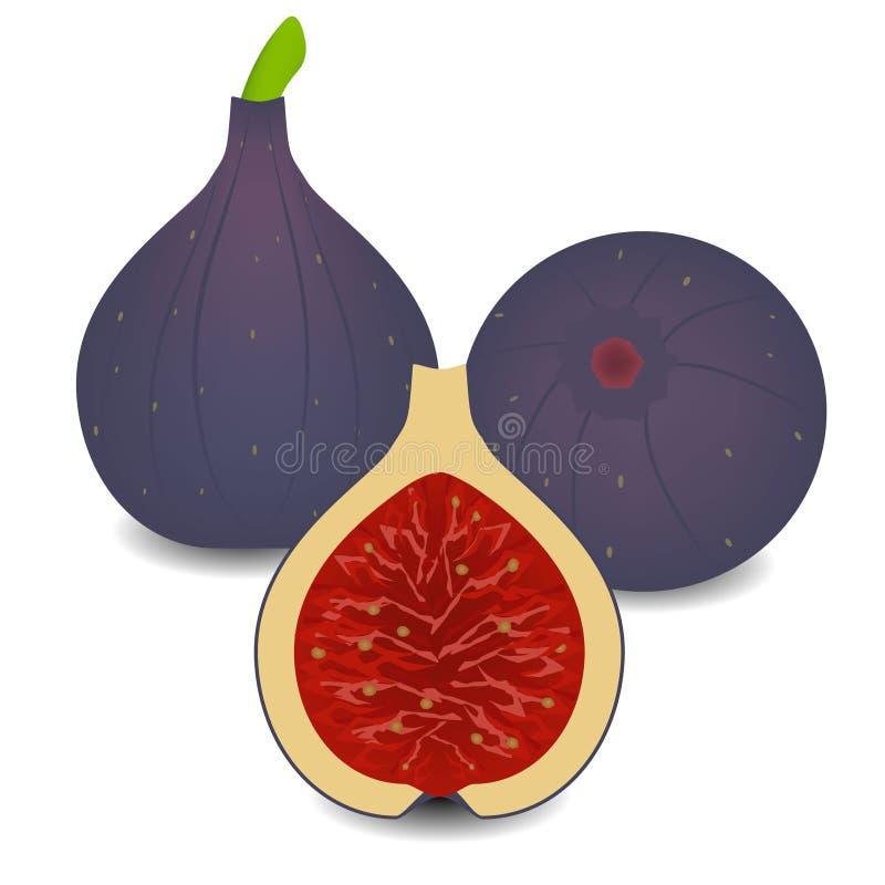 Czupirzy całą owoc z połówką na białym tle royalty ilustracja