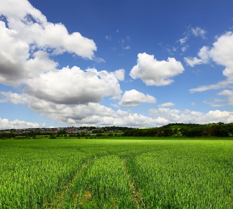 czyścić ekologicznego środowiska zdjęcie royalty free
