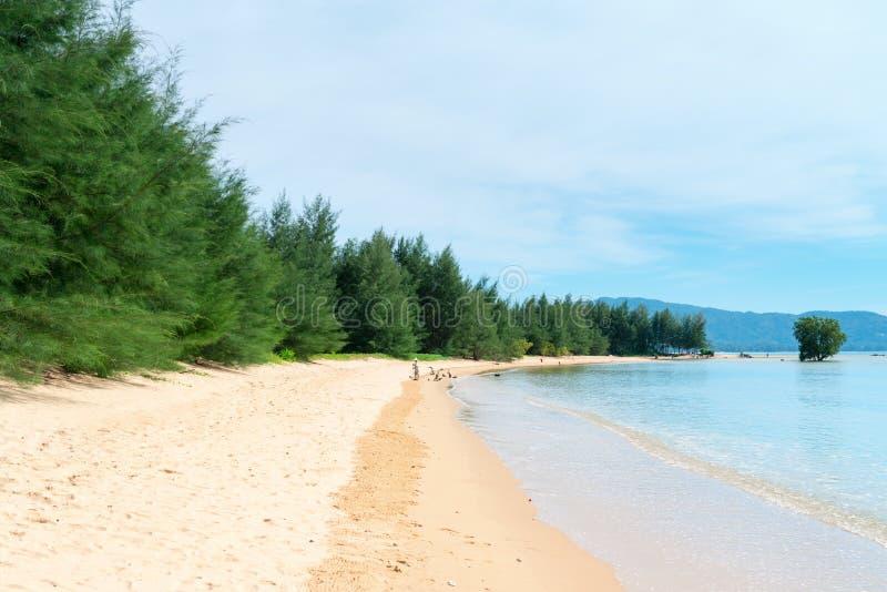 Czyścić na tropikalnej piaskowatej plaży zdjęcie stock