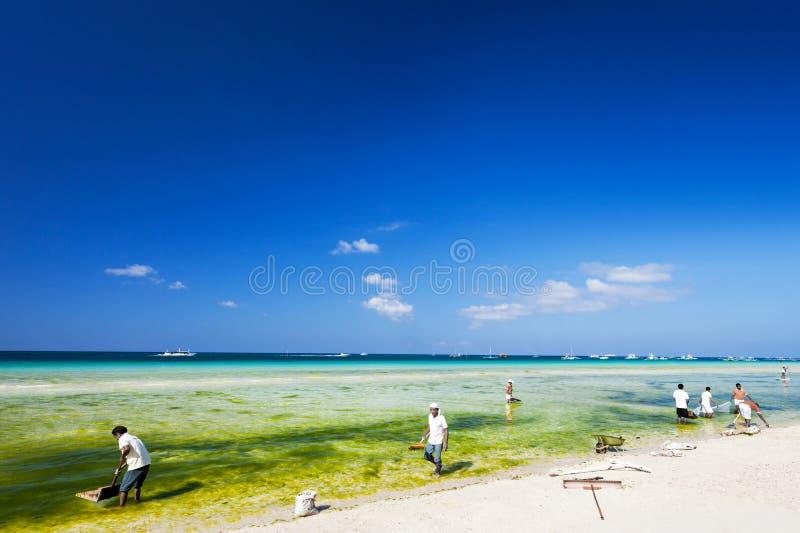 Czyścić plażę zdjęcie royalty free