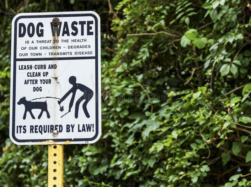Czyści w górę twój psiego znaka ulicznego po fotografia royalty free