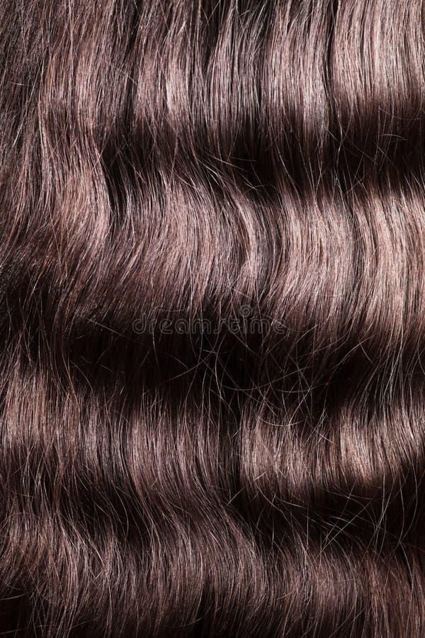 Czysta rozczesana falistego włosy brunetka obraz stock