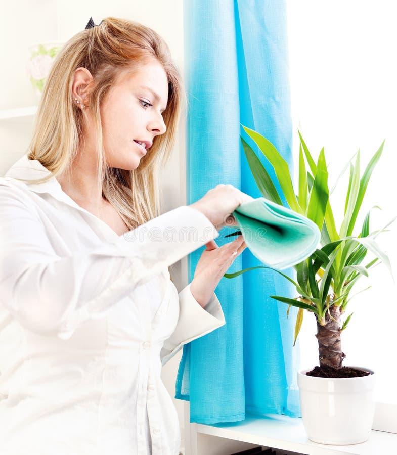 czysty dom opuszczać kobiety obrazy stock