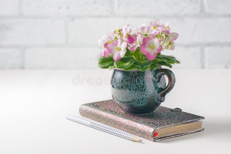 Czysty notatnika, menchii i Białego Afrykański fiołek na bielu stole od above, obraz stock