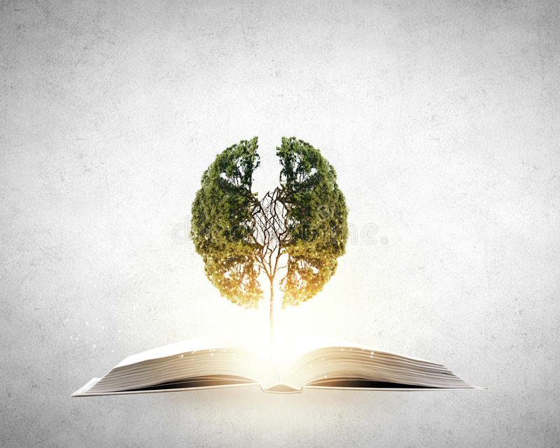 Czytać rozwija wyobraźnię zdjęcia stock