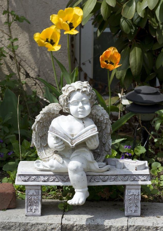 czytanie anioła fotografia royalty free