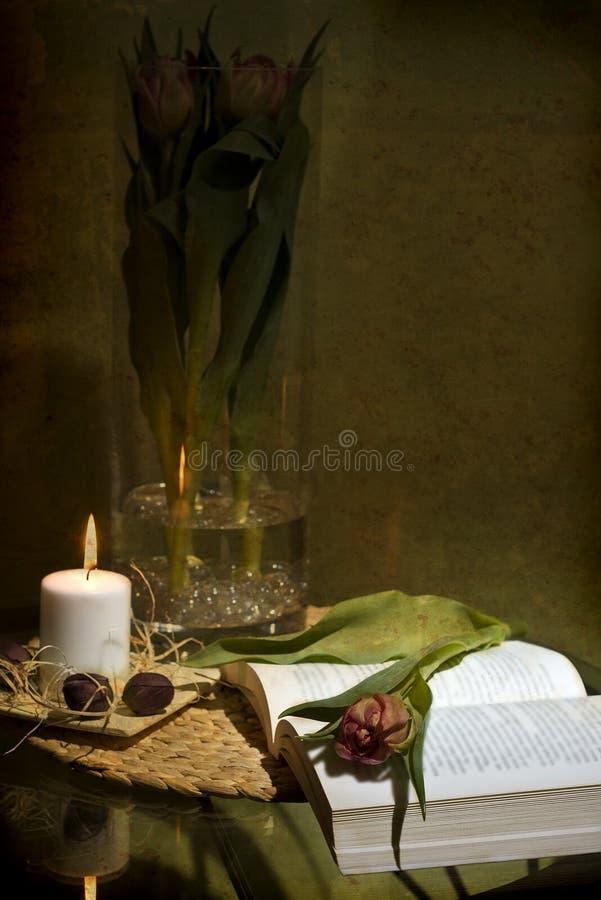 czytelniczy romantyczny zdjęcie stock