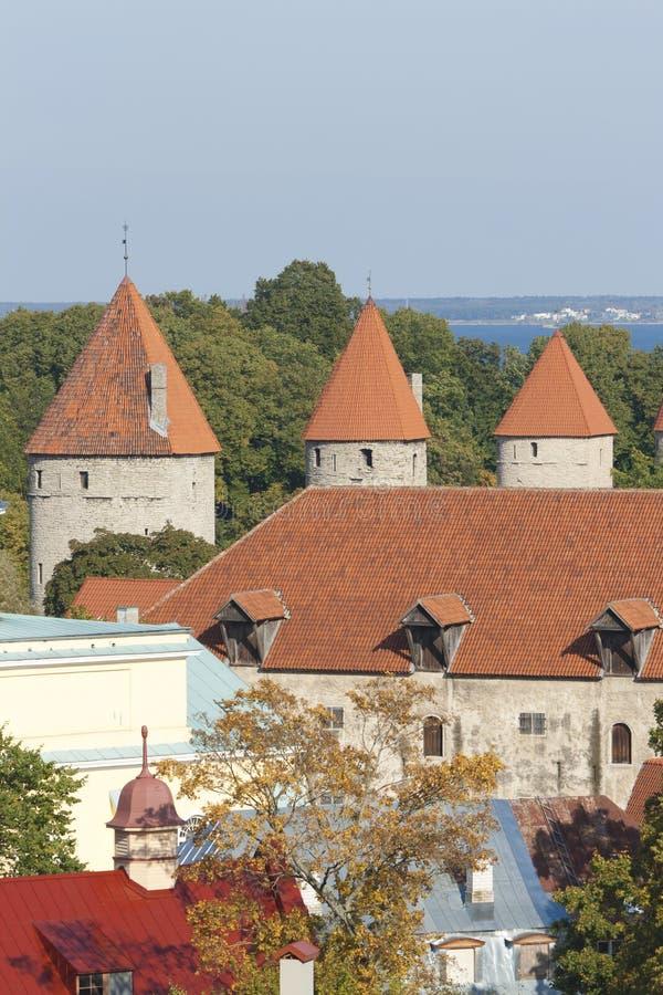Türme von Tallinn lizenzfreie stockfotos