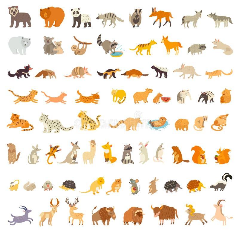 Däggdjur av världen Extra stor djuruppsättning också vektor för coreldrawillustration vektor illustrationer