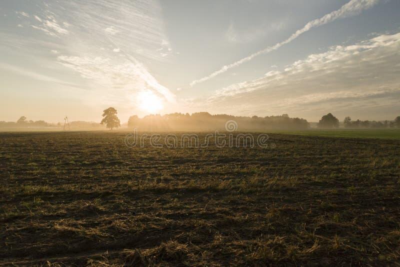 Dämmerung auf Bauernhof lizenzfreie stockfotografie