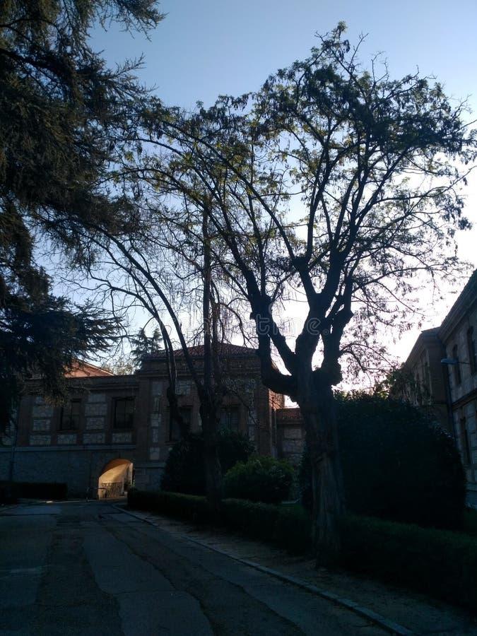 Dämmerung bei Colegio San Fernando lizenzfreie stockfotos