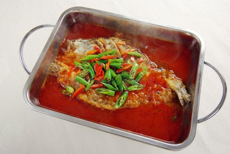 Dämpfende chinesische Nahrung, Fisch lizenzfreie stockbilder