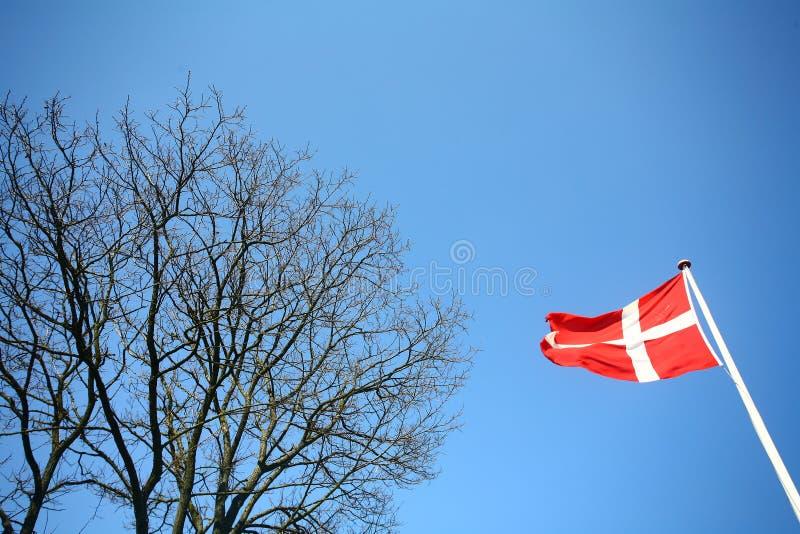 Dänische Markierungsfahne lizenzfreie stockfotos