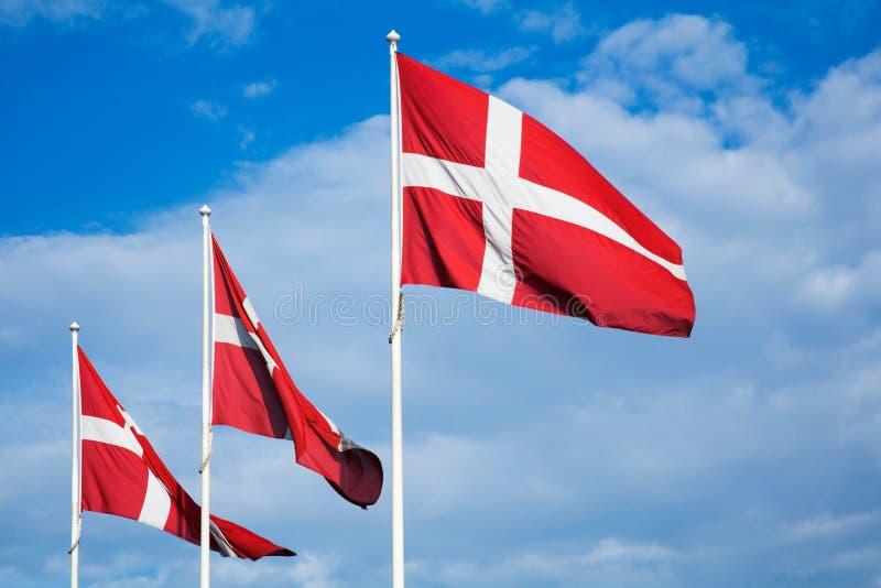 Dänische Markierungsfahnen stockfotos