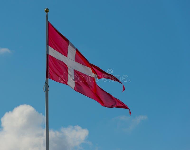 Dänische Staatsflagge. lizenzfreie stockfotos
