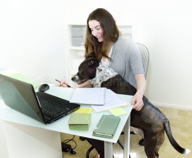 Dålig hund för kontorsarbete royaltyfria foton