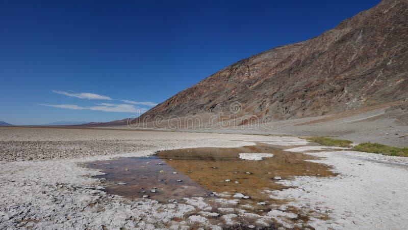 Dålig vattenhandfat i Death Valley royaltyfria bilder