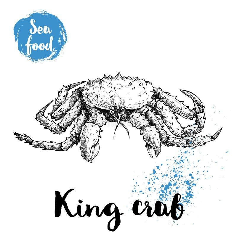 Dé el cangrejo de rey exhausto del bosquejo con las espinas grandes Ejemplo del vector de los mariscos stock de ilustración