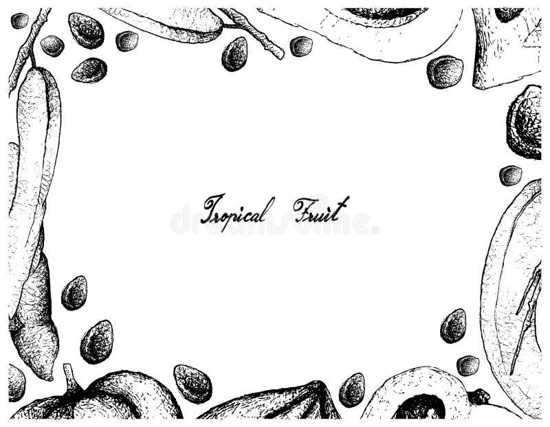 Dé el capítulo exhausto de los fingeres del ` s del hombre y del fondo muertos de Eggfruit ilustración del vector