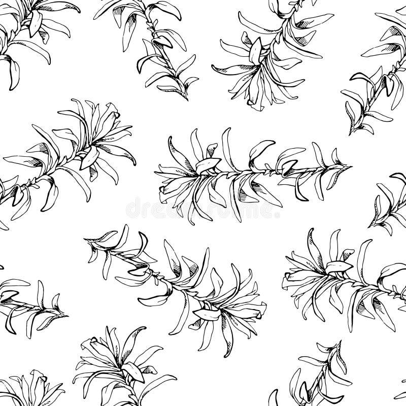 Dé el modelo exhausto con los elementos florales del vintage de las flores y de las hierbas libre illustration