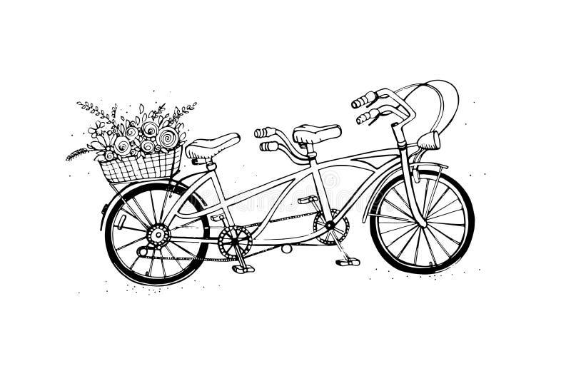 Dé la bicicleta en tándem exhausta de la ciudad con la cesta de flor Vintage, estilo retro Ejemplo del vector del bosquejo libre illustration