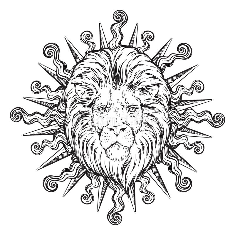 Dé la cabeza exhausta del león en los rayos del sol aislados sobre el ejemplo blanco del vector del fondo Diseño de destello del  ilustración del vector