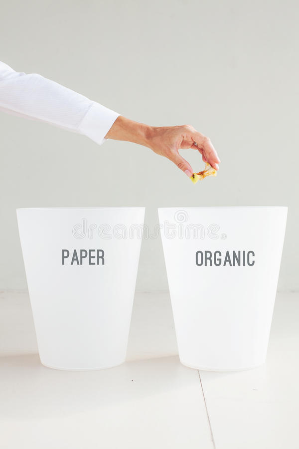 dé lanzar una base de la manzana a un compartimiento correspondiente de los desperdicios Orga foto de archivo libre de regalías