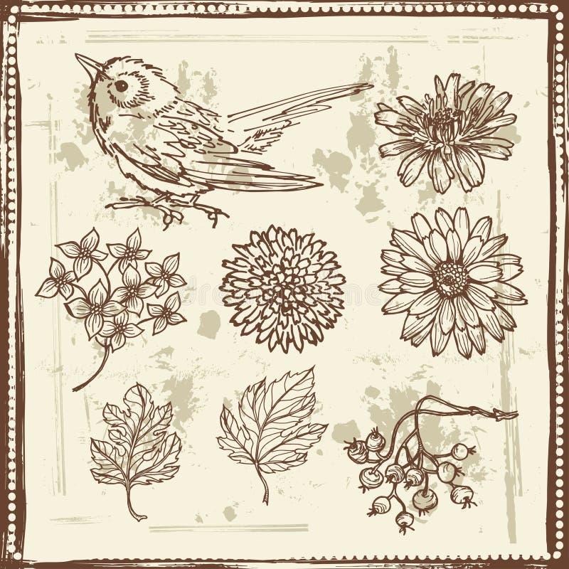Dé los bosquejos exhaustos de flores y del pequeño pájaro ilustración del vector