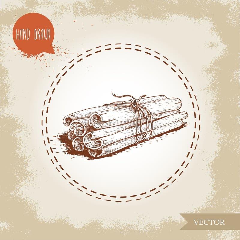 Dé los palillos de canela exhaustos del estilo del bosquejo atados con guita Aislado en fondo del vintage ilustración del vector