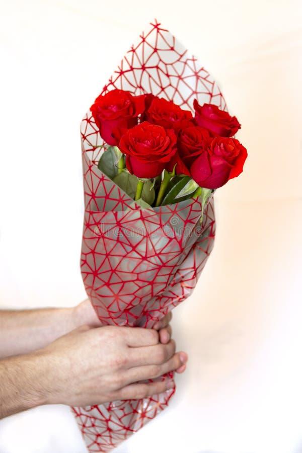 Dé sostener el ramo de rosas rojas sobre el fondo blanco foto de archivo