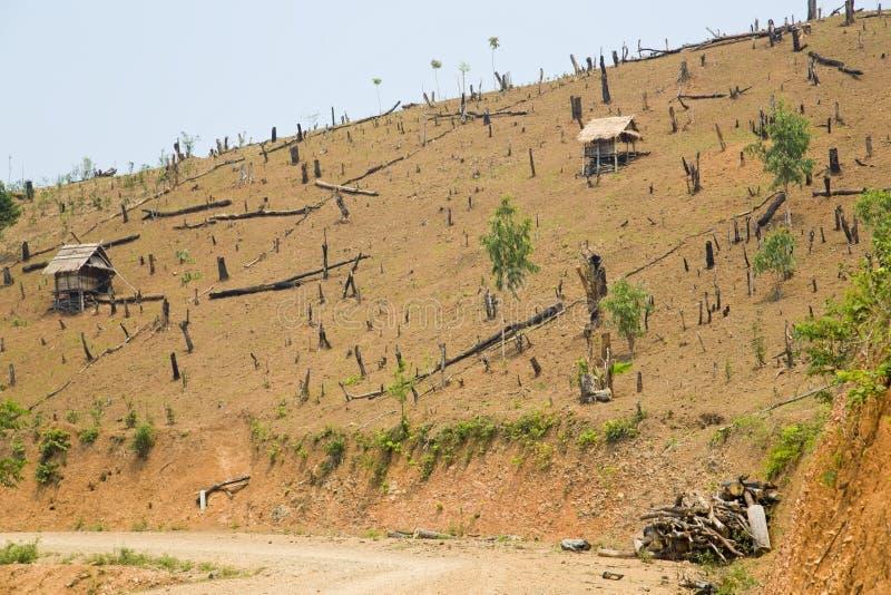 Déboisement au Laos, coupant la forêt tropicale, la terre nue photographie stock libre de droits
