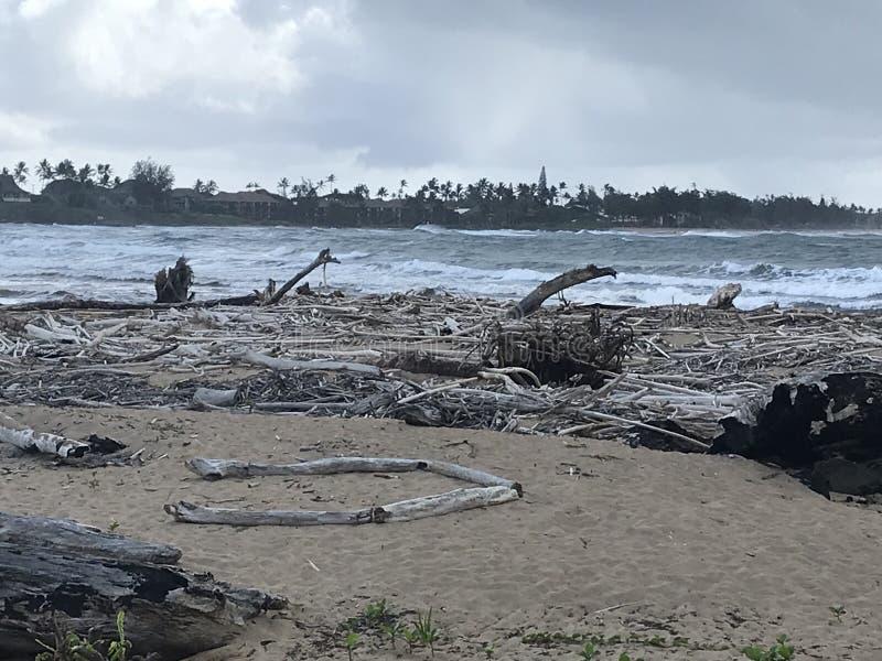 Débris répandus sur la plage dans Kauai après l'inondation image libre de droits